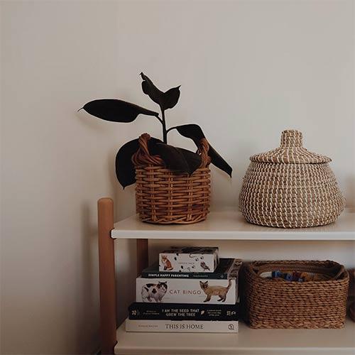minimalism - a neatly organised shelf