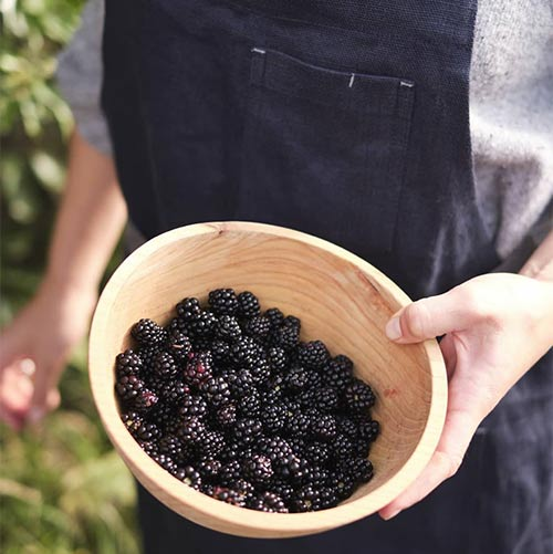 woman in apron holding bowl of brambles
