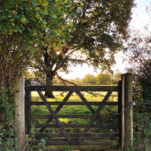 a wooden gate entrance to the woodlands