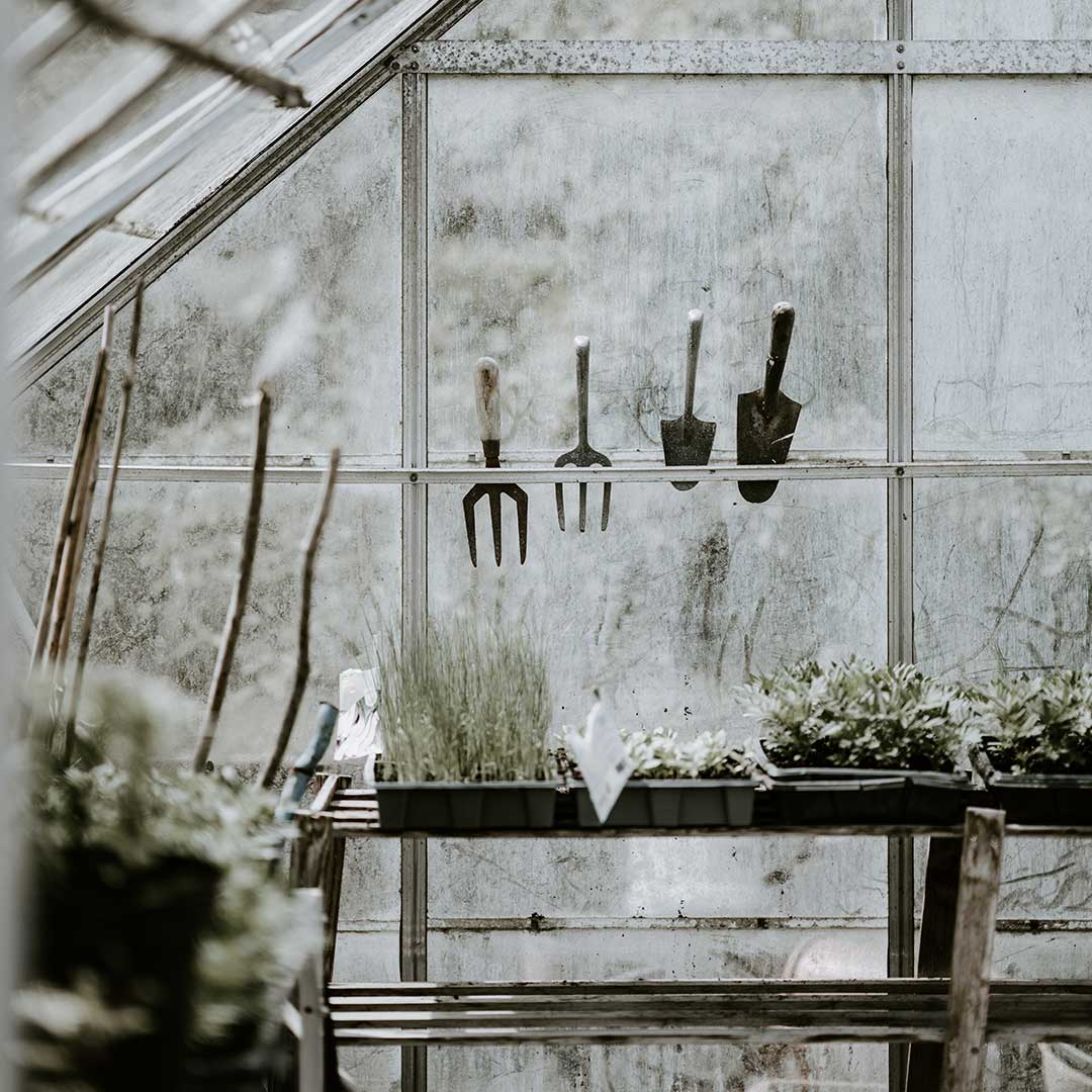 greenhouse with garden tools