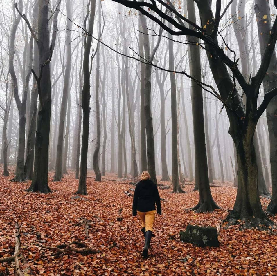 Ruth Allen seen from behind walking in a misty forest with brown leaves on the ground