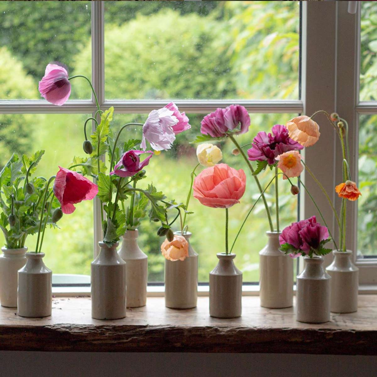 a windowsill with small vases filled with poppies