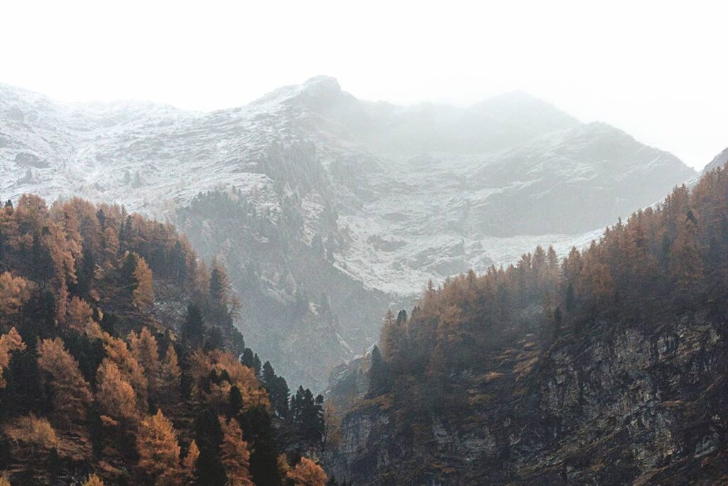 mountains, partly covered in snow and autumn colored trees