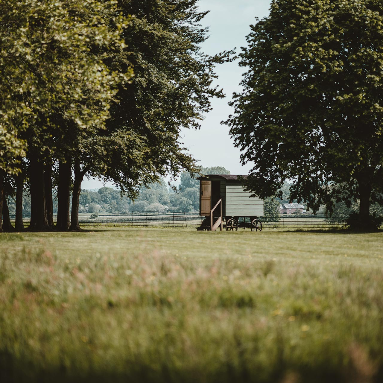 shepherd's hut accommodation in a field surrounded by trees