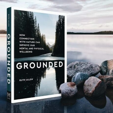 cover of the book grounded by ruth allen